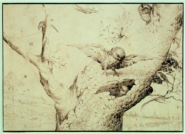 Hieronymus Bosch, The owls' nest. Rotterdam, Museum Boijmans Van Beuningen