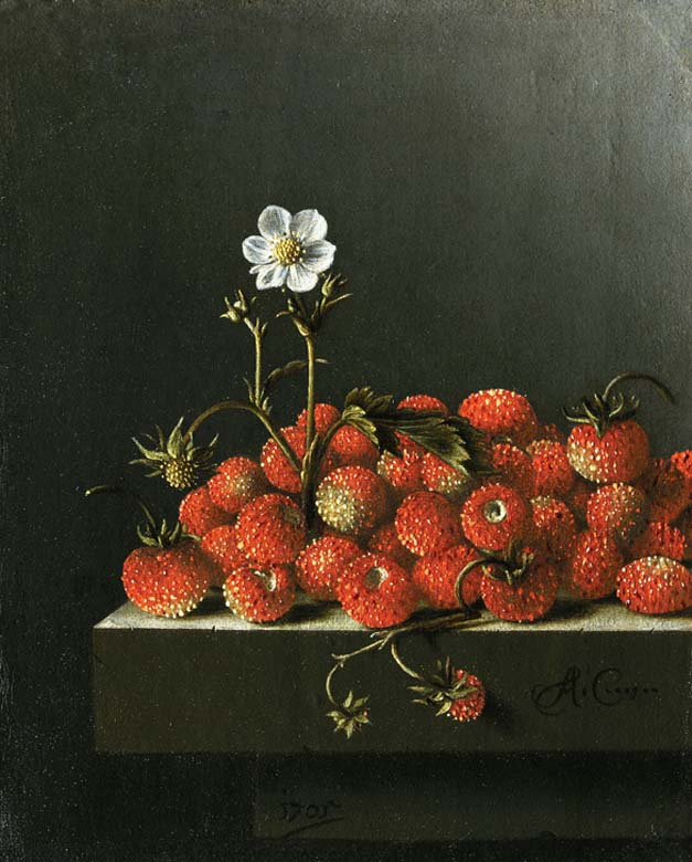 Adriaen Coorte, Strawberries, 1705. The Hague, Mauritshuis