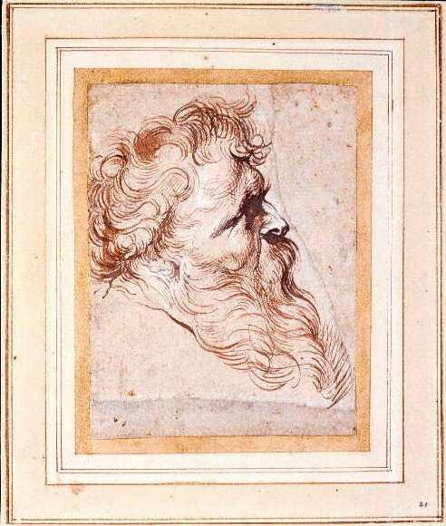 Peter Paul Rubens, Head of bearded man in profile, ca. 1618-21, Glasgow, Hunterian Art Gallery