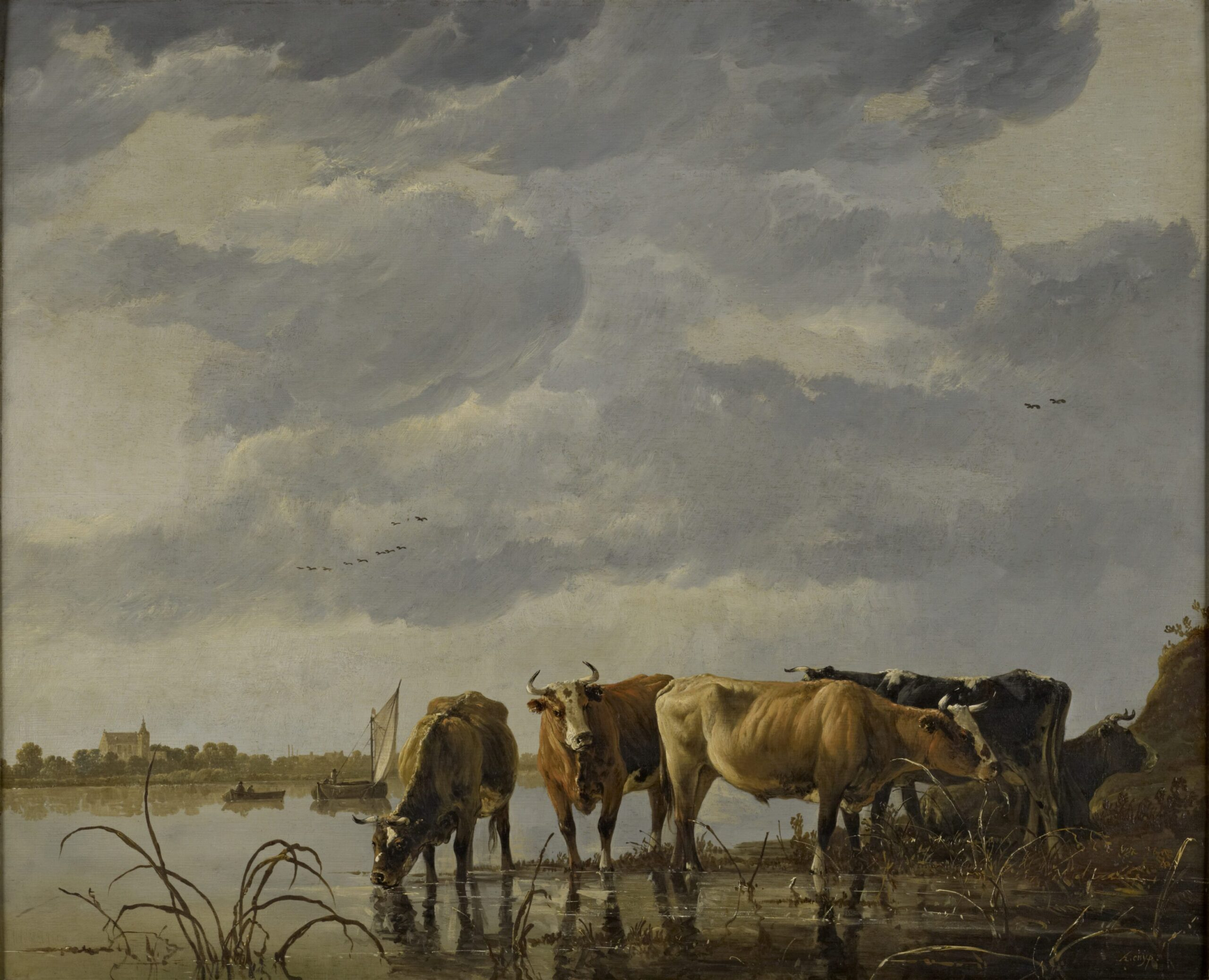 Aelbert Cuyp (1620-1691), Cattle Watering by an Estuary, ca. 1650 oil on panel, 59.7 x 72.4 cmThe Bute Collection at Mount Stuart