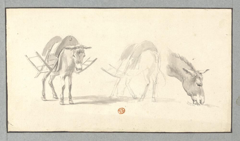 Fig. 4: Jan Frans Legillon (1739-1797), Studies of a Donkey, Groeningemuseum, Printroom, 0000.GRO2224.II Photo: Dominique Provost