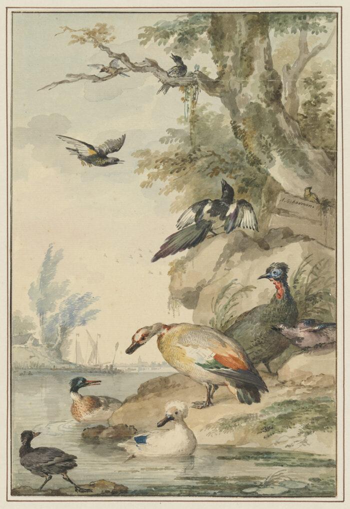 Fig 9. Aart Schouman (1710-1792),<em> Water Scene with Birds</em>, inv. 4060/3330