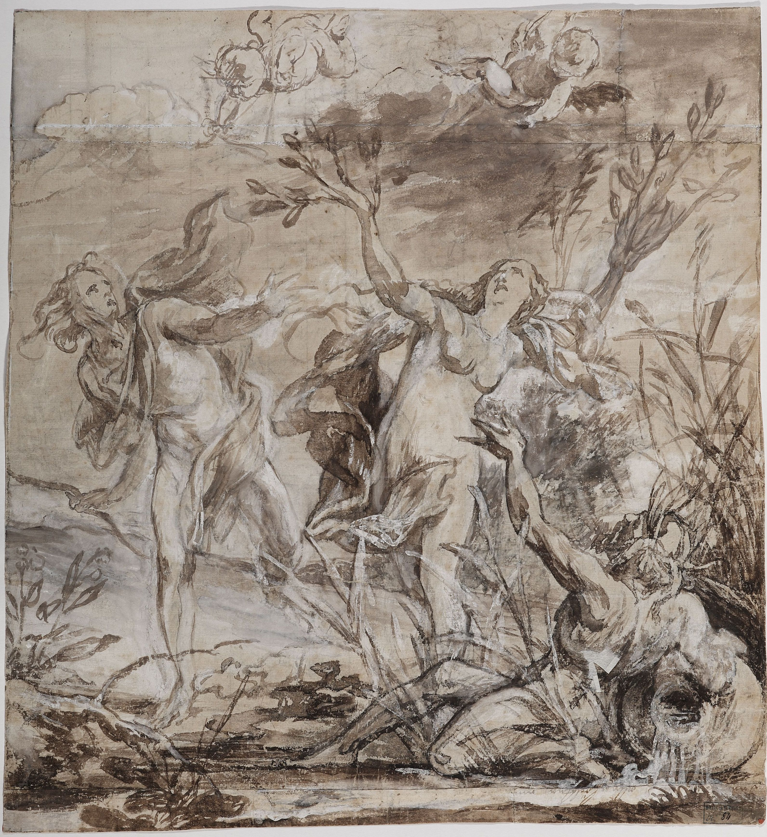Jan Boeckhorst (1604-1668), Apollo and Daphne pen and brown ink, brown wash, heightened with opaque white, 37.4 x 34.6 cm Bergues, Musée du Mont-de-Piété, inv. no. 2011.0.209.84 © Musée du Mont-de-Piété - Bergues / Photo Studio Mallevaey