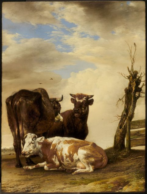 Paulus Potter (1625-1654), Two Cows and a Young Bull beside a Fence in a Meadow, 1647 The Art Institute of Chicago, Chicago, Illinois. In loving memory of Harold T. Martin from Eloise W. Martin, wife, and Joyce Martin Brown, daughter; Charles H. and Mary F.S. Worcester Collection; Lacy Armour Endowment; through prior gift of Frank H. and Louise B. Woods