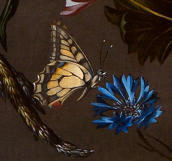 Krannert Art Museum Acquires Flower Still Life By Anna