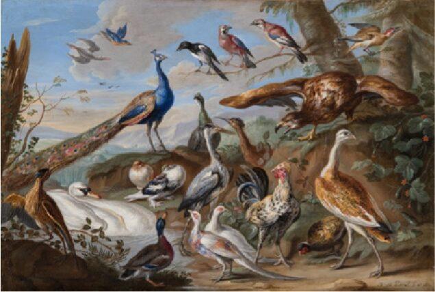 Jan van Kessel (1626-1679), <em>Birds in a Landscape</em>, 1662 Kunstmuseum St. Gallen