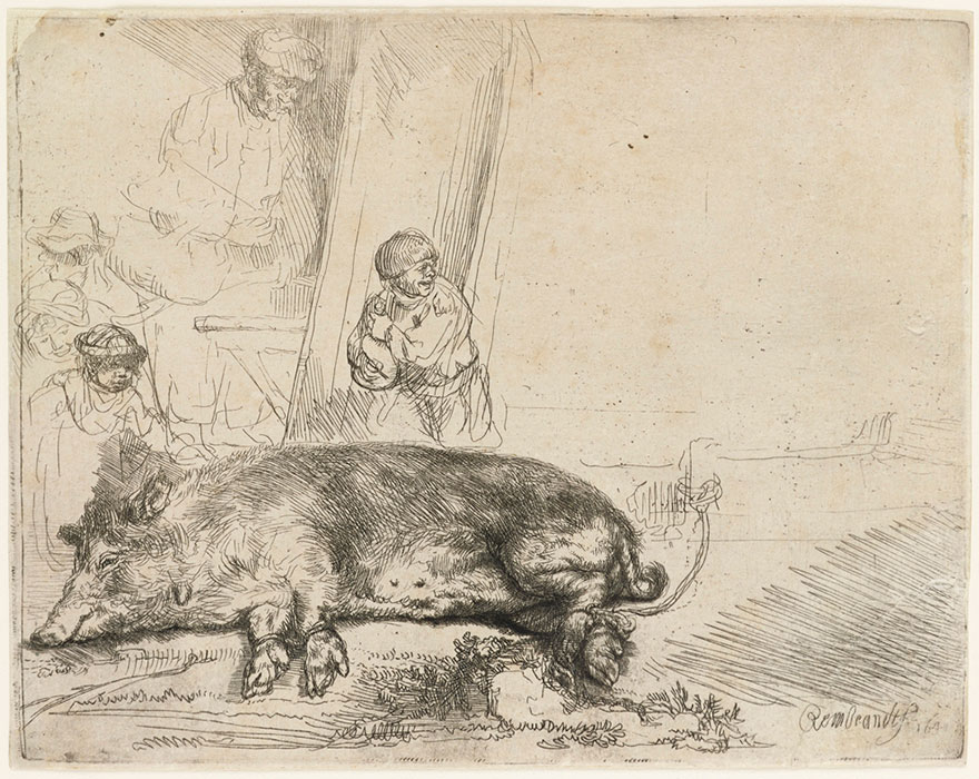 Rembrandt (1606-1669), The Hog1643 The Ashmolean Museum, Oxford