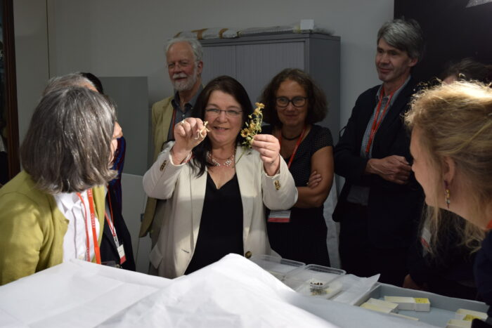 Lieve Watteeuw, Professor at the University of Leuven, Conservator-Restorator and Research Coordinator of the Enclosed Gardens conservation project showing the participants delicate objects taken from the Enclosed Gardens during a visit to the restoration studio