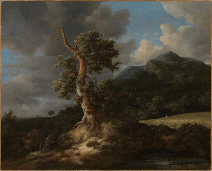 3. Jacob Ruisdael (1628-1682), Mountainous Landscape with a Blasted Oak Tree, 1660sNasjonalmuseet, Oslo (NMK.2013.0346) photo: Børre Høstland